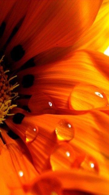 Арт-терапия. Значения цветов. Блог Татьяны Дугельной