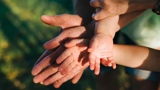 Сотрудничество-взаимоуважение-прощение в семье