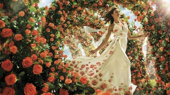 Исцеление розами