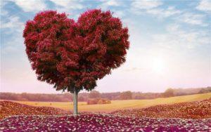 вера в любовь1