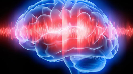 Биотоки коры головного мозга