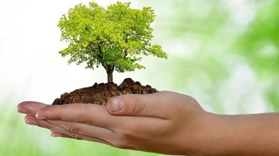 основа духовного роста