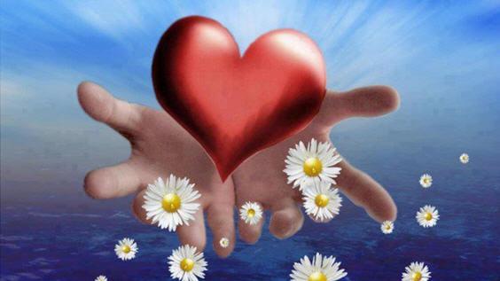 Заварушка в сердце