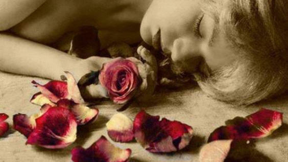 осыпание лепестков розы