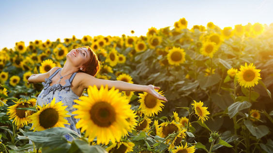 Солнце – источник счастья
