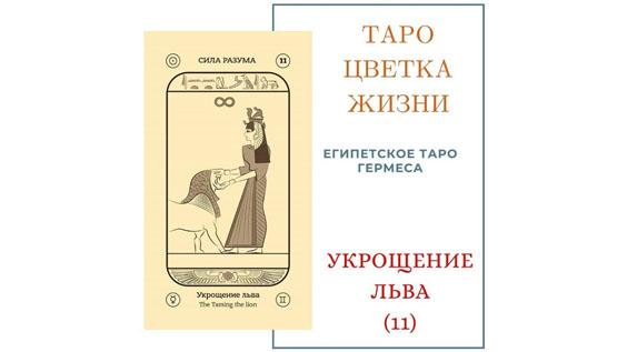 УКРОЩЕНИЕ 11