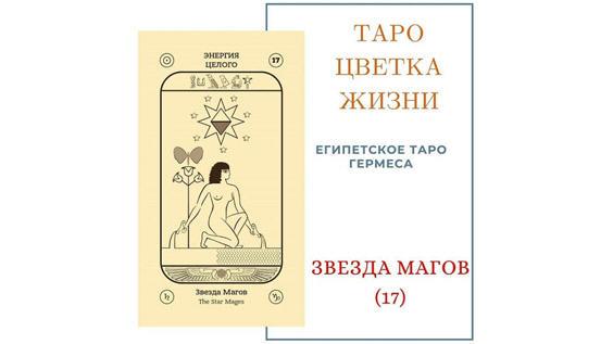 ЗВЕЗДА МАГОВ 17